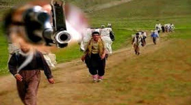 کشتە و زخمی شدن ٥ کولبربا شلیک مستقیم نیروهای سپاه پاسداران در سردشت