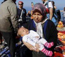 پیدا شدن اجساد ۱۲ پناهجو در آبهای دریای اژه