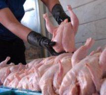 افزایش ۳۵۰ تومانی  قیمت مرغ در بازارهای کشور