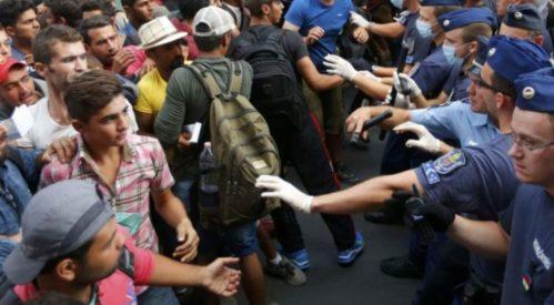 ۵۳۰ پناهجو درخطر اخراج از بلژیک