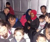 دستگیری ۱۳۶ مهاجر غیرقانونی در ادیرنه ترکیه
