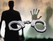 بیش از ۳۰ دوتابعیتی در ایران از سوی سپاه پاسداران طی دو سال گذشته دستگیر شدند