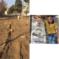 تخریب سنگ قبرهای امامزاده عبدلله توسط اوقاف